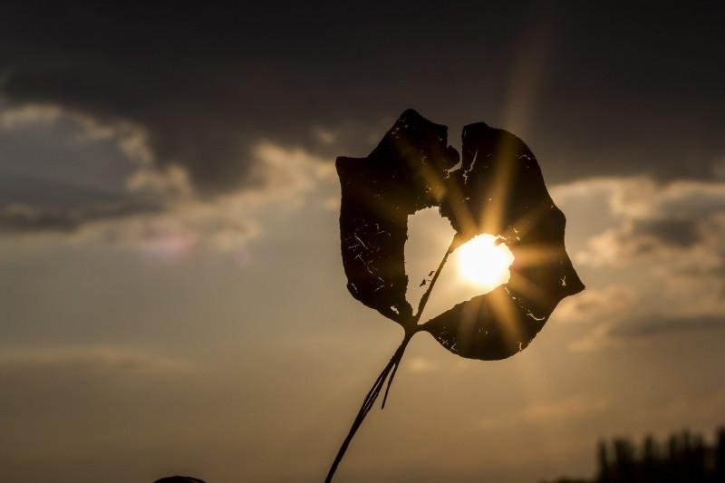 Store fordele ved solcellelamper fra Solarcamp.dk
