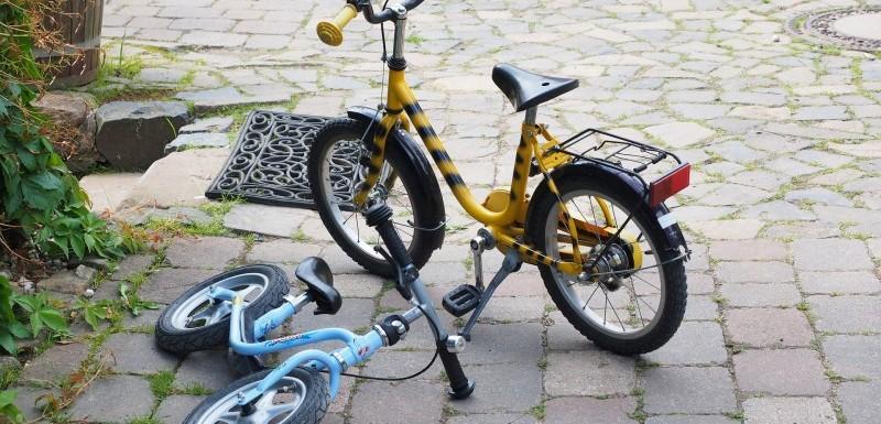 Cykelvogne: Til cykelturen, løbeturen og rejsen